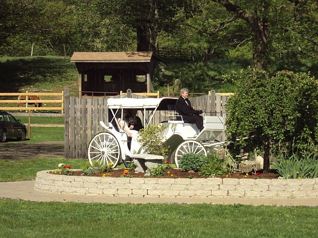 Carriages & Country Weddings @ Wood Acres Farm - Ceremony Sites, Reception Sites - 68 Griffin Rd, Terryville, CT, United States