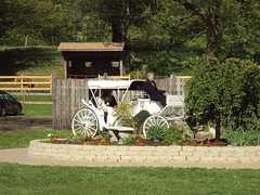 Carriages & Country Weddings @ Wood Acres Farm - Ceremony - 68 Griffin Rd, Terryville, CT, United States