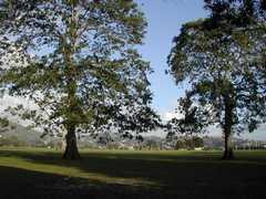 Savanah ( Carnival)  - Park - Queen's Park Savannah, St Ann's, St George