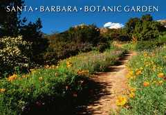 Santa Barbara Botanic Garden - Attraction - 1212 Mission Canyon Rd, Santa Barbara, CA, 93105, US