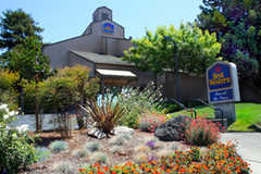 Best Western Inn at the Vines - Hotel - 100 Soscol Ave, Napa, CA, 94559