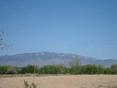 Rio Grande Nature Center State Park - Attraction - 2901 Candelaria Rd NW, Albuquerque, NM, 87107