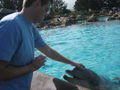 Sea World - Attractions - San Diego, CA, United States