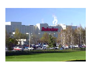 Anheuser-busch (brew Tours) - Attractions/Entertainment - 3101 Busch Dr, Fairfield, CA, 94534