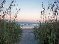 Folly Beach - Ceremony -