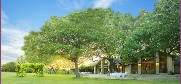Los Encinos Hill Country Estate - Ceremony Sites, Reception Sites - 24183 Boerne Stage Rd, San Antonio, TX, 78255, US