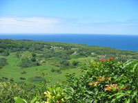 Ke'anae Valley Lookout Park - State Parks - Haiku, Hawaii, United States