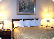 Comfort Inn And Suites - Hotels/Accommodations - 2317 Trans Canada Way Southeast, Medicine Hat, AB, Canada