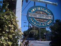 Mermaid & the Alligator - Hotel - 729 Truman Ave, Key West, FL, 33040, US