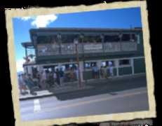 Cheeseburger in Paradise - Nightlife - 811 Front St, Lahaina, HI, 96761