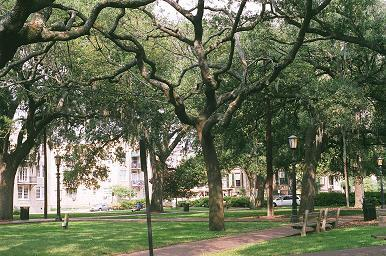 Oglethorpe Square - Reception Sites, Ceremony Sites - Abercorn  St, State St, Savannah, Georgia, United States