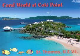 Coral World Marine Park And Observatory - Attractions/Entertainment -