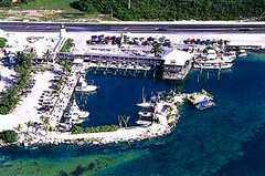 Whale Harbor Restaurant - Restaurant - 83413 Overseas Hwy, Islamorada, FL, United States