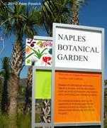 Naples Botanical Garden - Attractions - 4820 Bayshore Drive, Naples, FL, United States