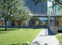Nasher Sculpture Center - Attraction - 2001 Flora St, Dallas, TX, United States