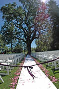 Casa Vecchia - Ceremony & Reception - 8205 Sonoma Hwy, Kenwood, CA, 95452