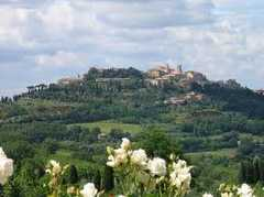 Montepulciano Area - Wine Tours -
