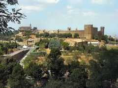 Montalcino Area - Wine Tours -