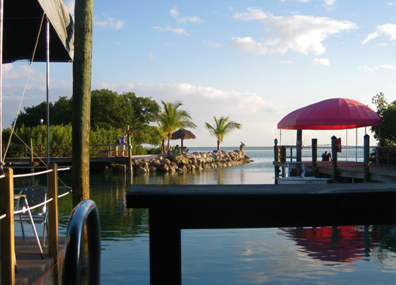 Hog Heaven Sports Bar & Grill - Bars/Nightife, Restaurants, Attractions/Entertainment - 85361 Overseas Hwy, Islamorada, FL, United States