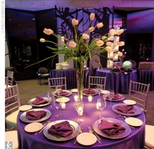 Camelot Banquets - Reception Sites - 8624 W 95th St, Hickory Hills, IL, 60457