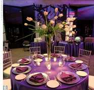 Camelot Banquets - Reception - 8624 W 95th St, Hickory Hills, IL, 60457
