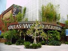 Dallas World Aquarium - Entertainment - 1801 N Griffin St, Dallas, TX, United States