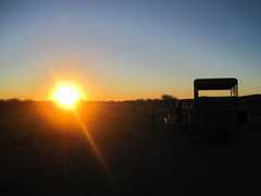 Sundowner & Bush Dinner - Bush Dinner -