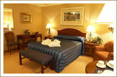 Les Suites Victoria - Hotel - 1 rue Victoria, Gatineau, J8X 1Z6
