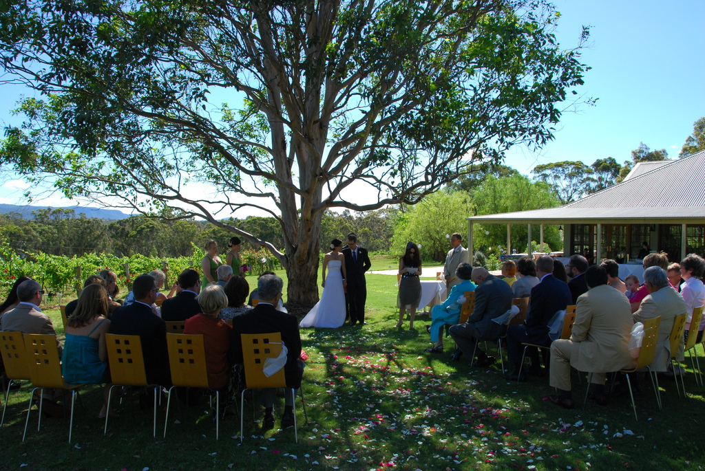 Spicers Vineyards Estate - Reception Sites - 555 Hermitage Rd, Pokolbin, NSW, 2320
