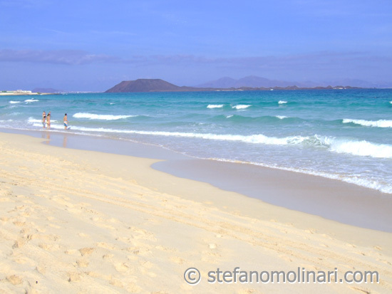 Playa Corralejo - Beaches -