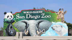 San Diego Zoo - Things To Do - 2920 Zoo Dr, San Diego, CA, USA