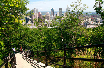 Mont-royal Park - Attractions/Entertainment, Parks/Recreation - 1260 chemin Remembrance, Montréal, QC, Canada