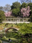Huntington Library & Botanical Gardens - Things to Do, Places to See - 1151 Oxford Rd, San Marino, CA, 91108, US