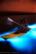 Fajardo Bioluminescent Bay - Attraction - Fajardo, PR, null