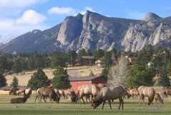 Estes Park, CO - Day Trips - Estes Park, CO, Estes Park, Colorado, US
