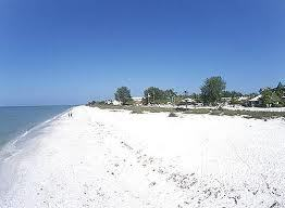 Honeymoon Island State Park - Beaches, Attractions/Entertainment - Dunedin, FL, 34698, US