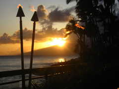 Sea House Restaurant - Restaurant - 5900 Lower Honoapiilani Road, Lahaina, HI, United States