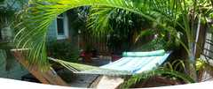 The Grand Guest House - Hotel - 1116 Grinnell Street, Key West, FL, United States
