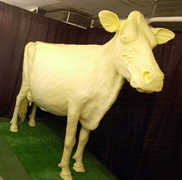 Iowa State Fair Grounds - Attraction - 3000 East Grand Avenue, Des Moines, IA, United States