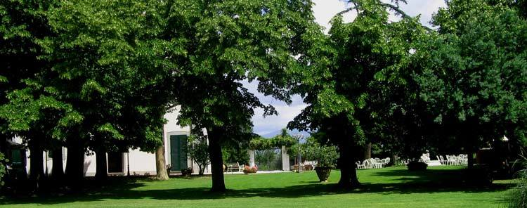 Villa Zaccanti - Reception Sites, Attractions/Entertainment - Via Bel Riposo, PT, Toscana, 51039