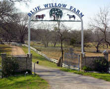 Blue Willow Farm - Ceremony - 1412 South U.S. Highway 77, La Grange, TX, 78945, United States