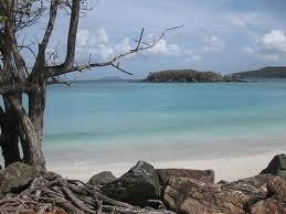 Cinnamon Bay Campground - Hotels/Accommodations - Cinnamon Beach, Saint John, Virgin Islands