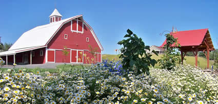 Redbarn Farms - Ceremony & Reception, Ceremony Sites - 501 Wawawai Rd, Colton, WA, 99113