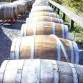 Six Mile Creek Vineyard - Reception Sites, Ceremony Sites, Wineries, Attractions/Entertainment - 1551 Slaterville Rd, Ithaca, NY, United States