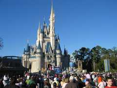 Disney World - Attraction-Disney World - United States