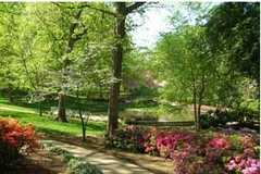 Glencairn Garden - Attraction - 725 Crest Street, Rock Hill, SC, United States