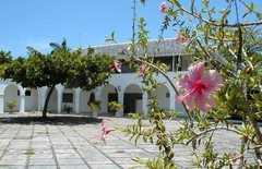 High Hope Estate - B&Bs - 16 Top Rd, St. Ann's Bay, Saint Ann, Jamaica