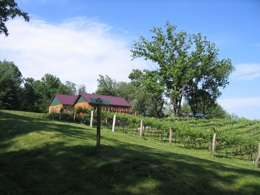 Hickory Ridge Vineyard - Ceremony Sites, Reception Sites - IL