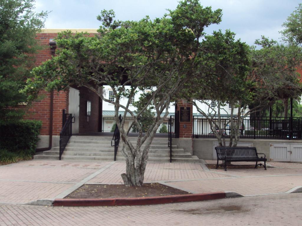 The Winter Park Farmer's Market - Reception Sites - 721 W New England Ave, Winter Park, FL, 32789