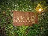 Akab - ENTERTAIMENT/DIVERSION - Via di Monte Testaccio, 69, Rome, Lazio, 00153, Italy